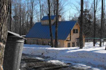 Little Charlie's Sugarbush