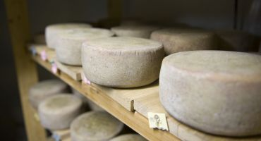 Southern Vermont Cheese Trail