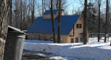 Maple & Food Trail of Northeastern Vermont